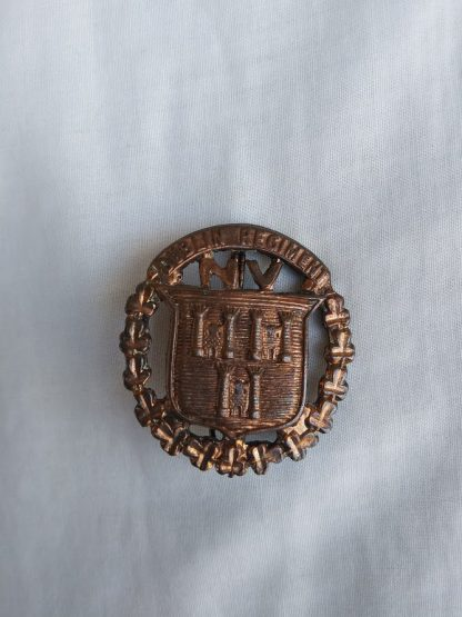Dublin Regiment Cap Badge