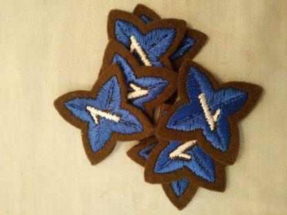 Cadet 1 star patch